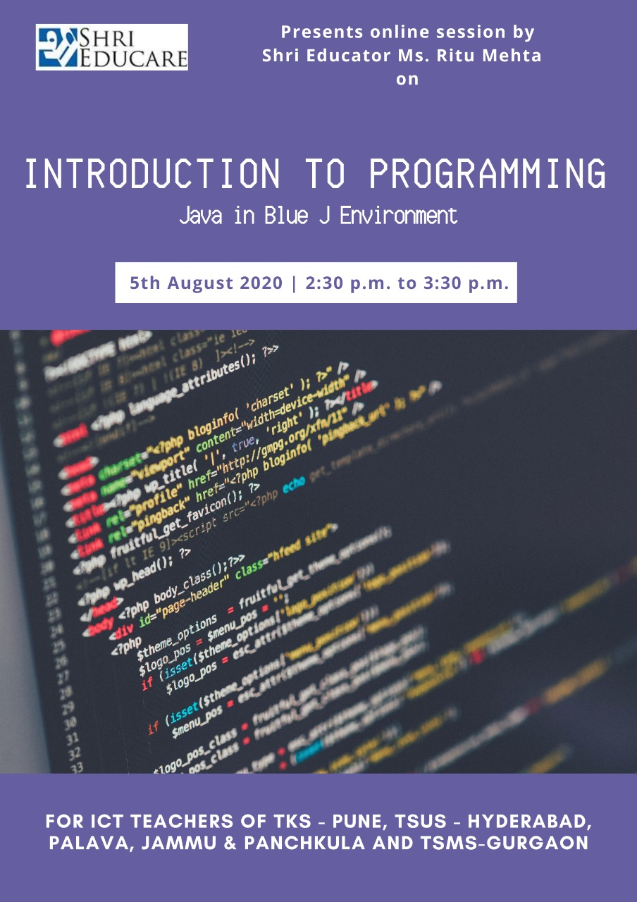 Online session on introduction to programming